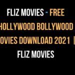 Fliz Movies - Free Hollywood Bollywood movies download 2021 | Fliz Movies
